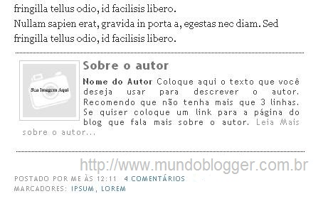 Biografia do Autor do post no rodapé